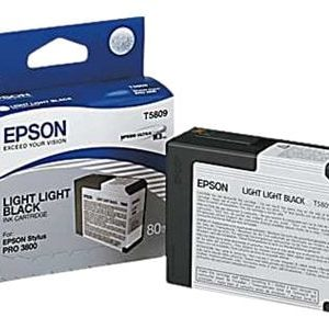 Epson väri T5809, light light black